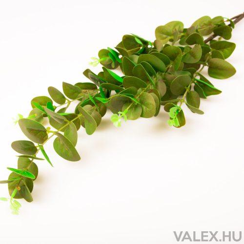 Eukaliptusz ág - Zöld